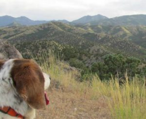 Belle considers the Oquirrh mountains