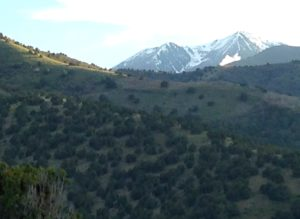 Snow in the Oquirrh mountains, as low as 8,000 feet